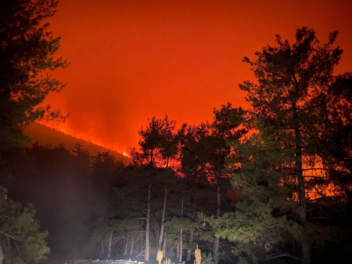 Bodrum da orman yangını #7