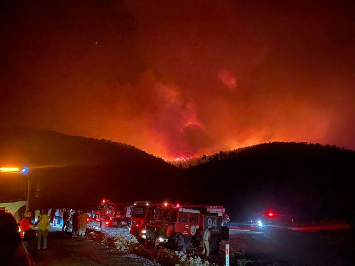 Bodrum da orman yangını #6