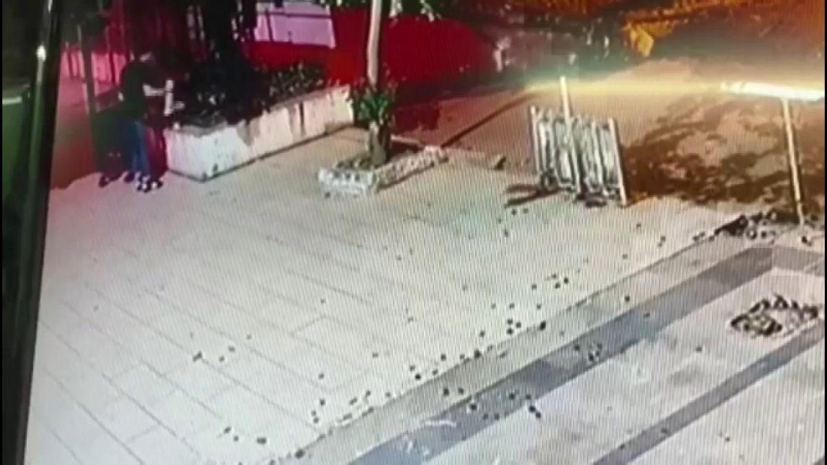 Üsküdar da bir şahsın sokak kedisini yerden yere vurduğu anlar kamerada #2