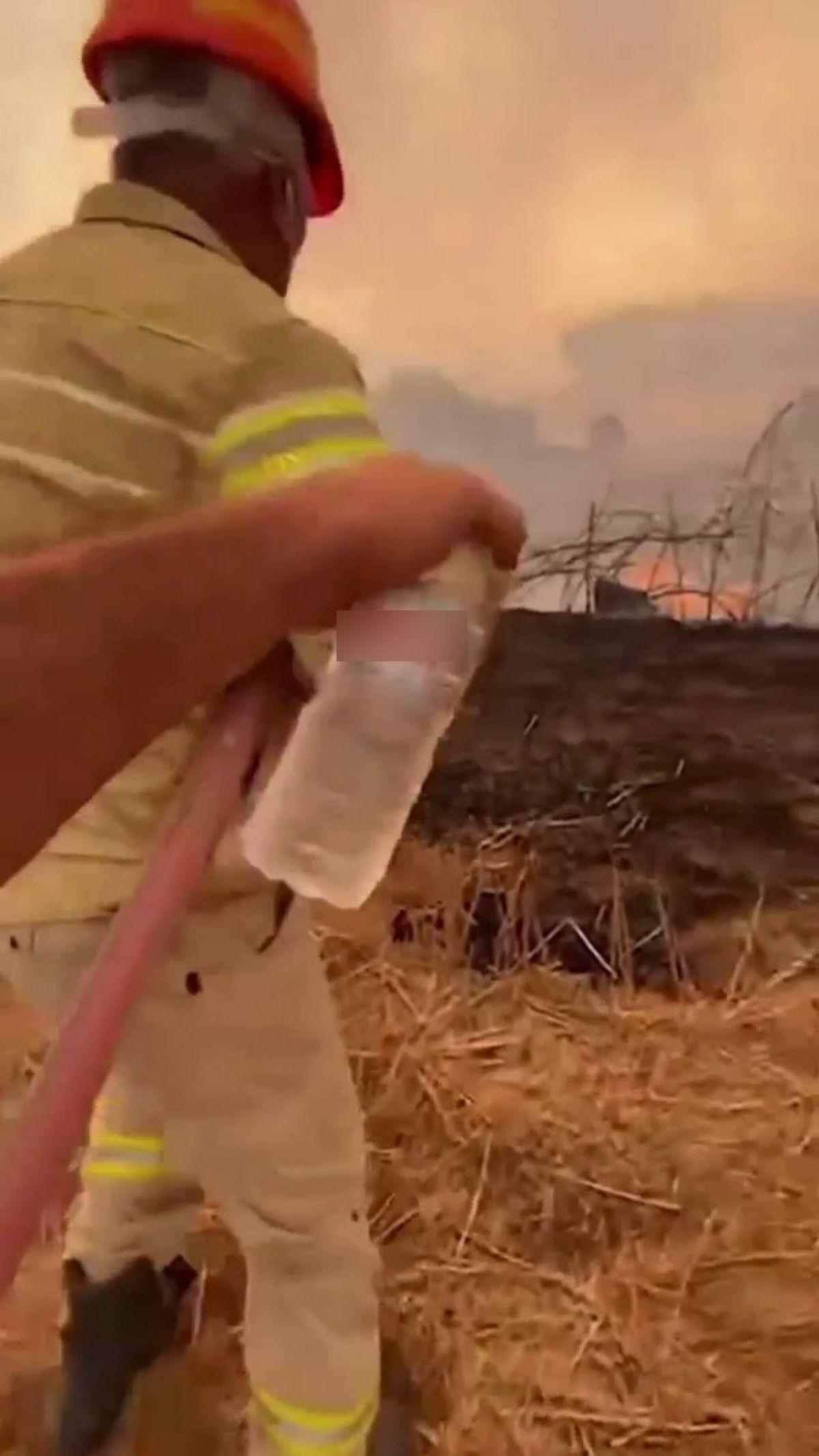 Adana da bir itfaiye eri, su içmeyi reddedip yangına müdahaleye devam etti #1