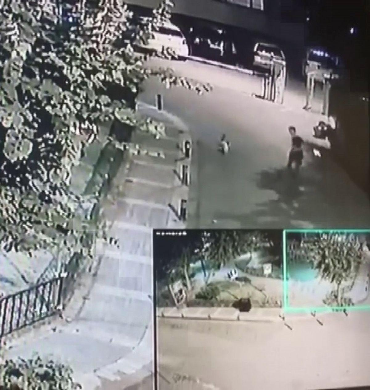 Üsküdar da bir şahsın sokak kedisini yerden yere vurduğu anlar kamerada #7