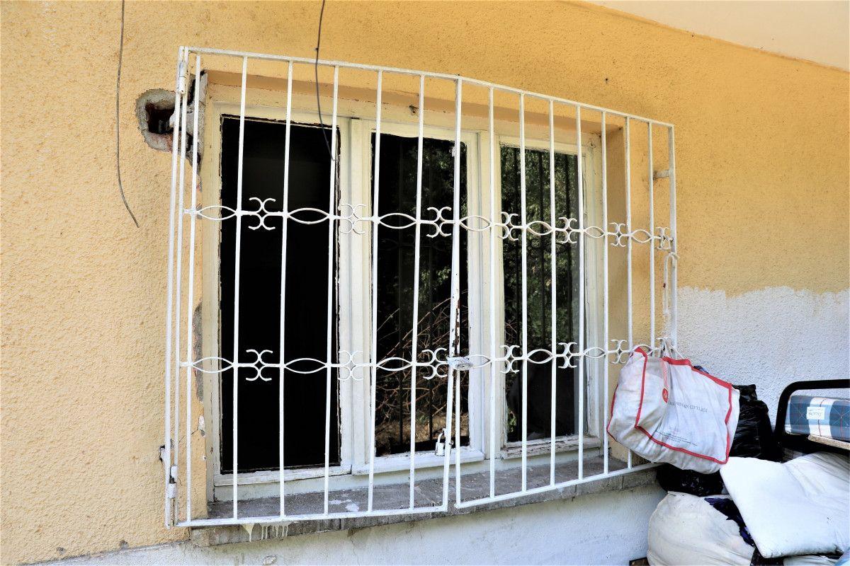 Ankara da bahçesinde 11 köpeğin cansız bedeni bulunan kadın, tutuklandı #4