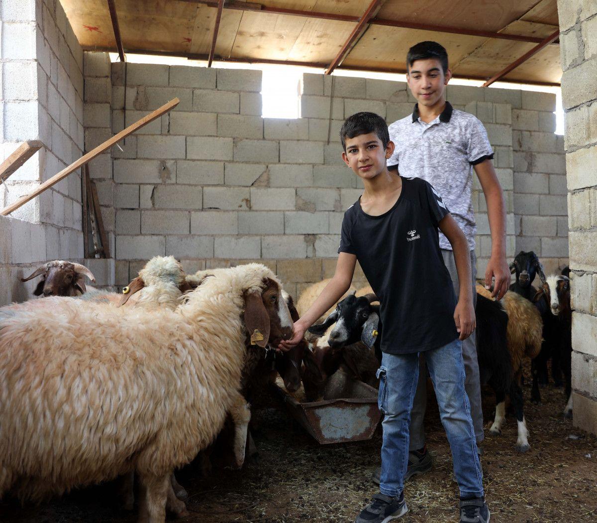 Gaziantep te keçileri kaybettiği için saklanan kardeşler bulundu #6
