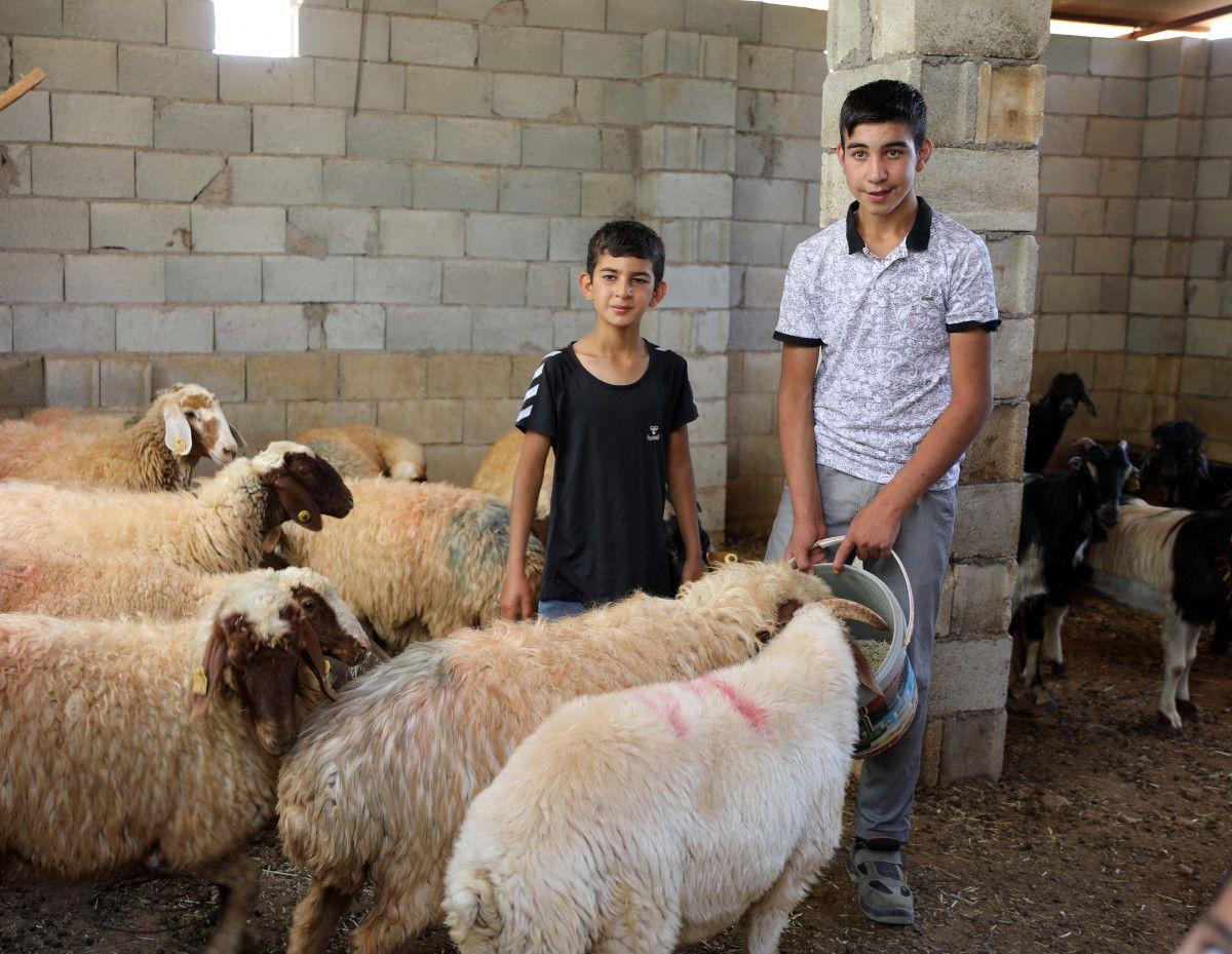 Gaziantep te keçileri kaybettiği için saklanan kardeşler bulundu #4