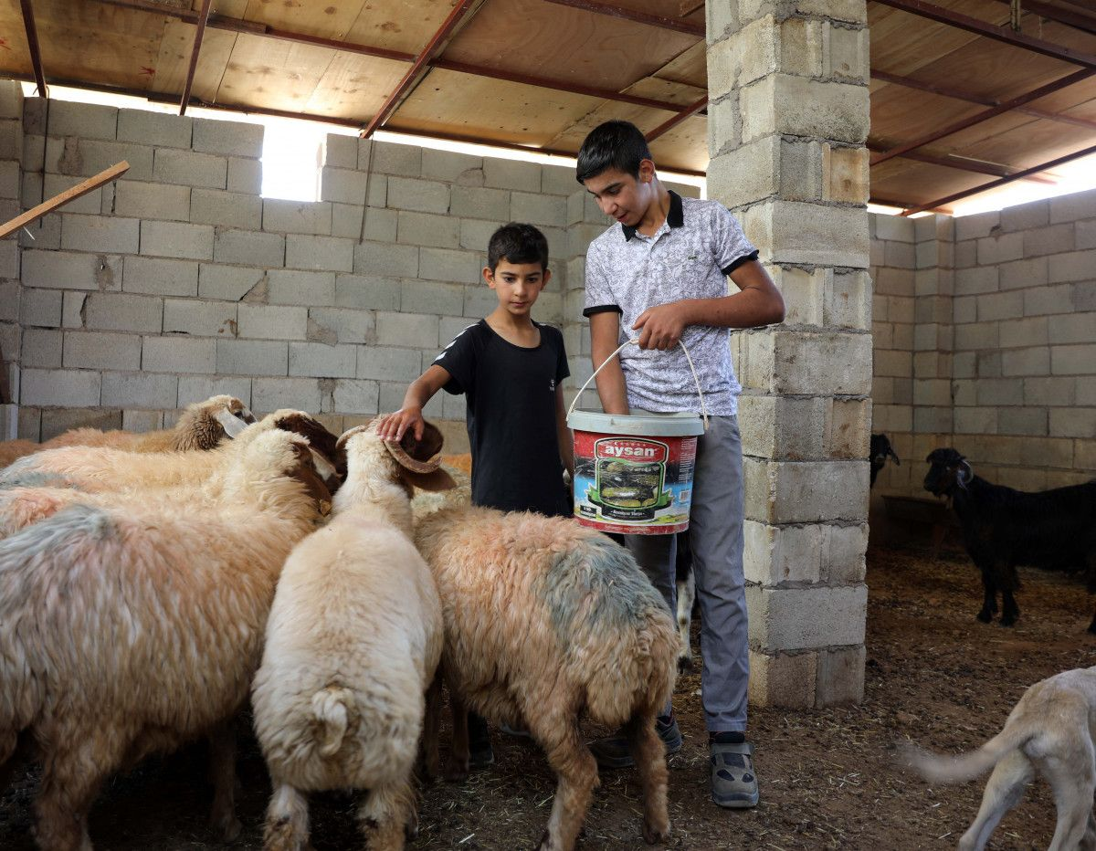 Gaziantep te keçileri kaybettiği için saklanan kardeşler bulundu #5