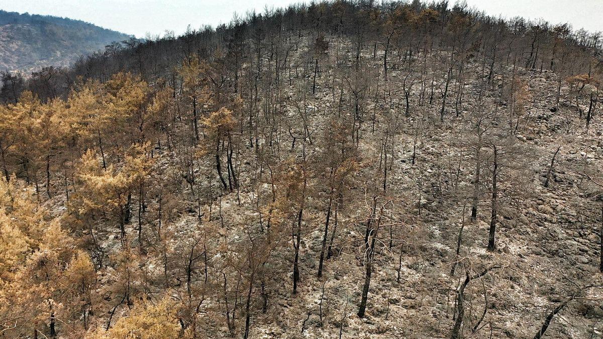 Bodrum ve Milas ta yanan alanlar drone ile havadan görüntülendi #9