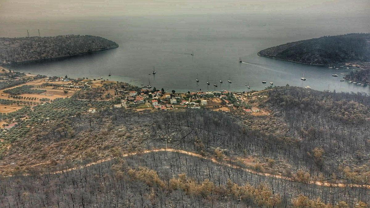 Bodrum ve Milas ta yanan alanlar drone ile havadan görüntülendi #1