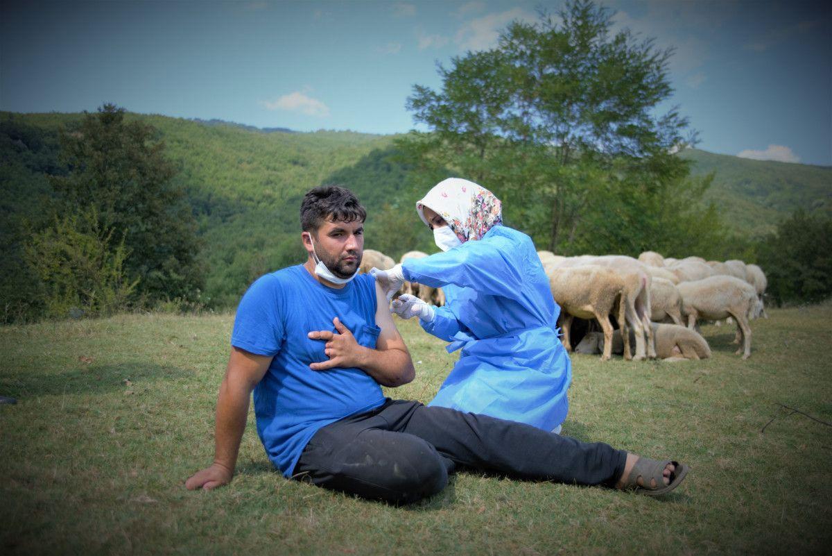 Bursa da çobanlar, yaylada koyun otlatırken aşılarını oldu #2