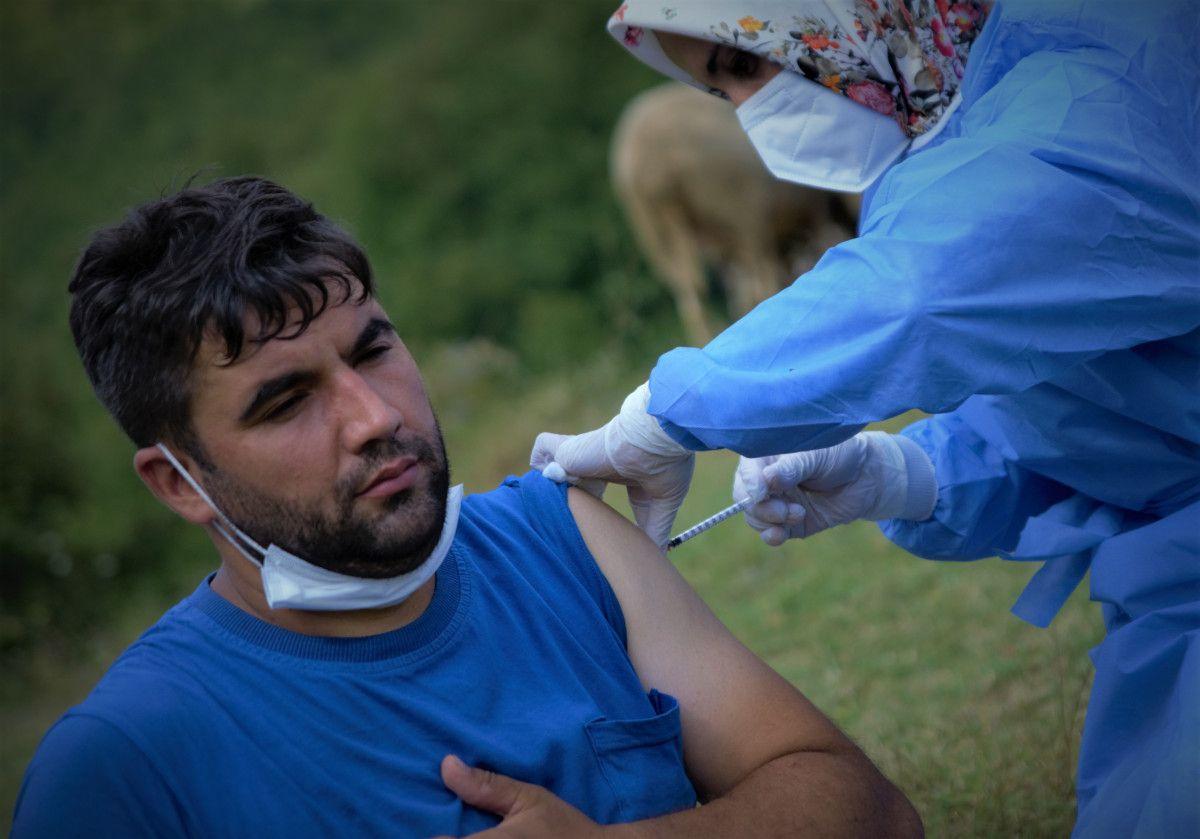 Bursa da çobanlar, yaylada koyun otlatırken aşılarını oldu #8