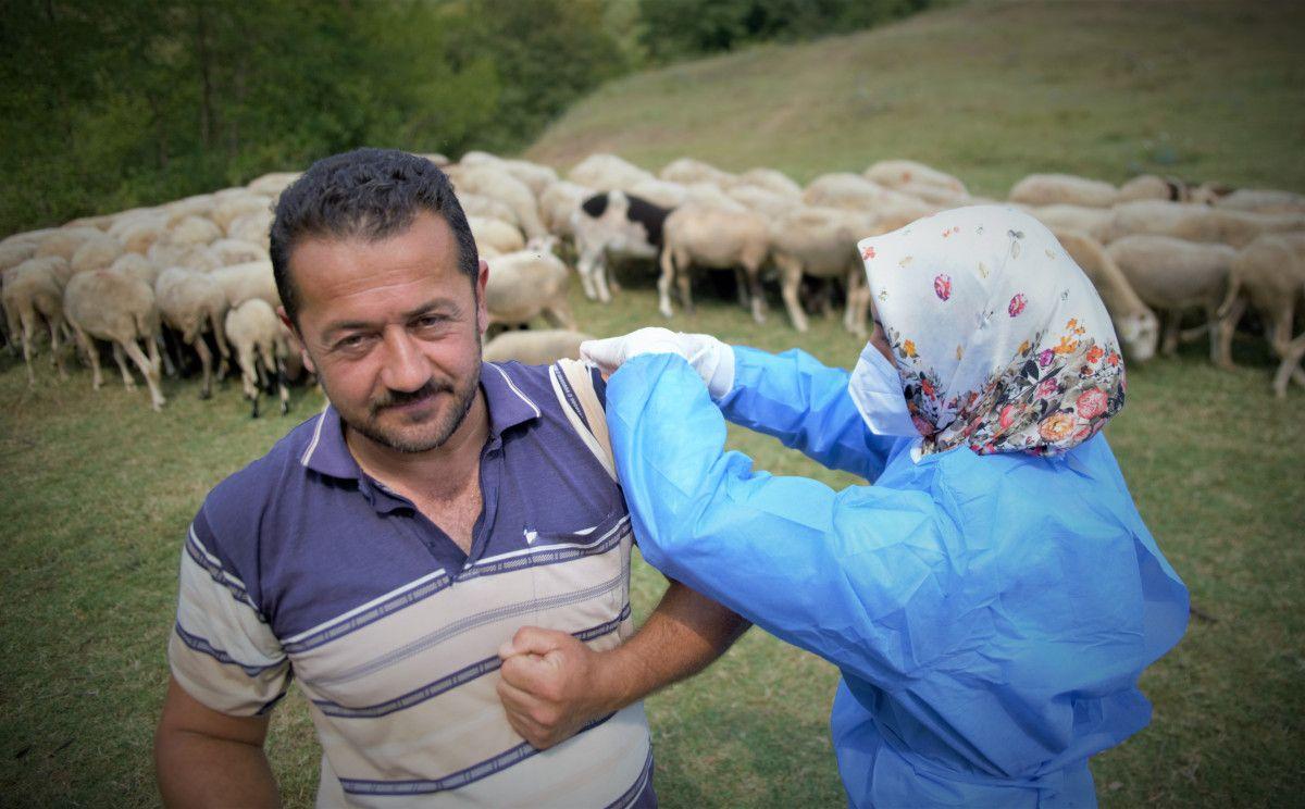Bursa da çobanlar, yaylada koyun otlatırken aşılarını oldu #1