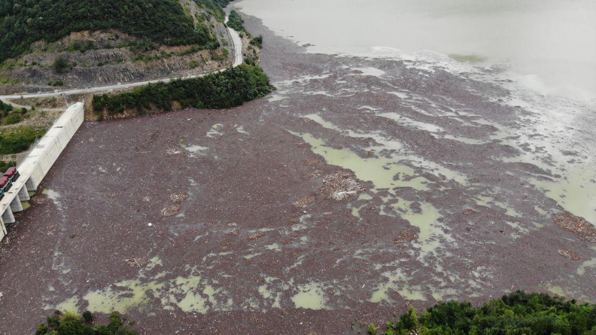 Bartın da selin getirdiği ağaçlar, Kirazlı Barajı'nı tehdit ediyor #2