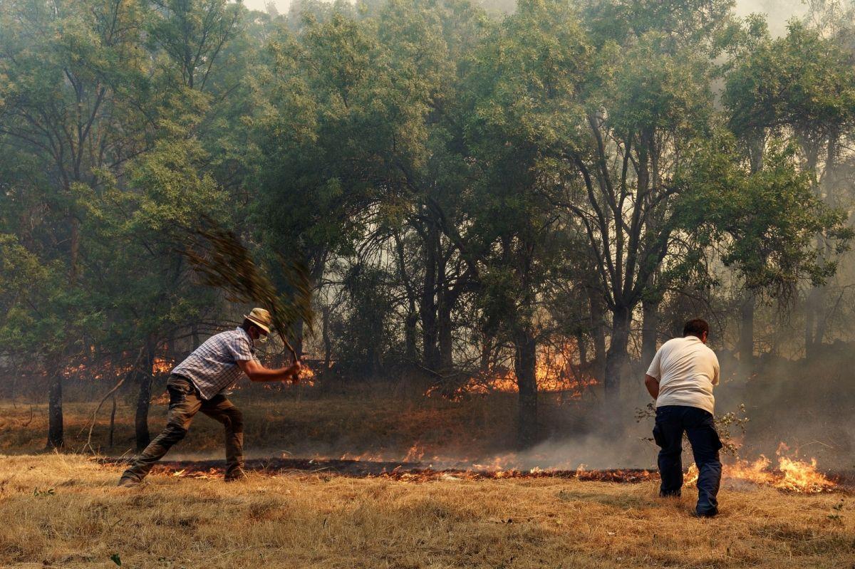 İspanya da 12 bin hektarlık ormanlık alan küle döndü #5