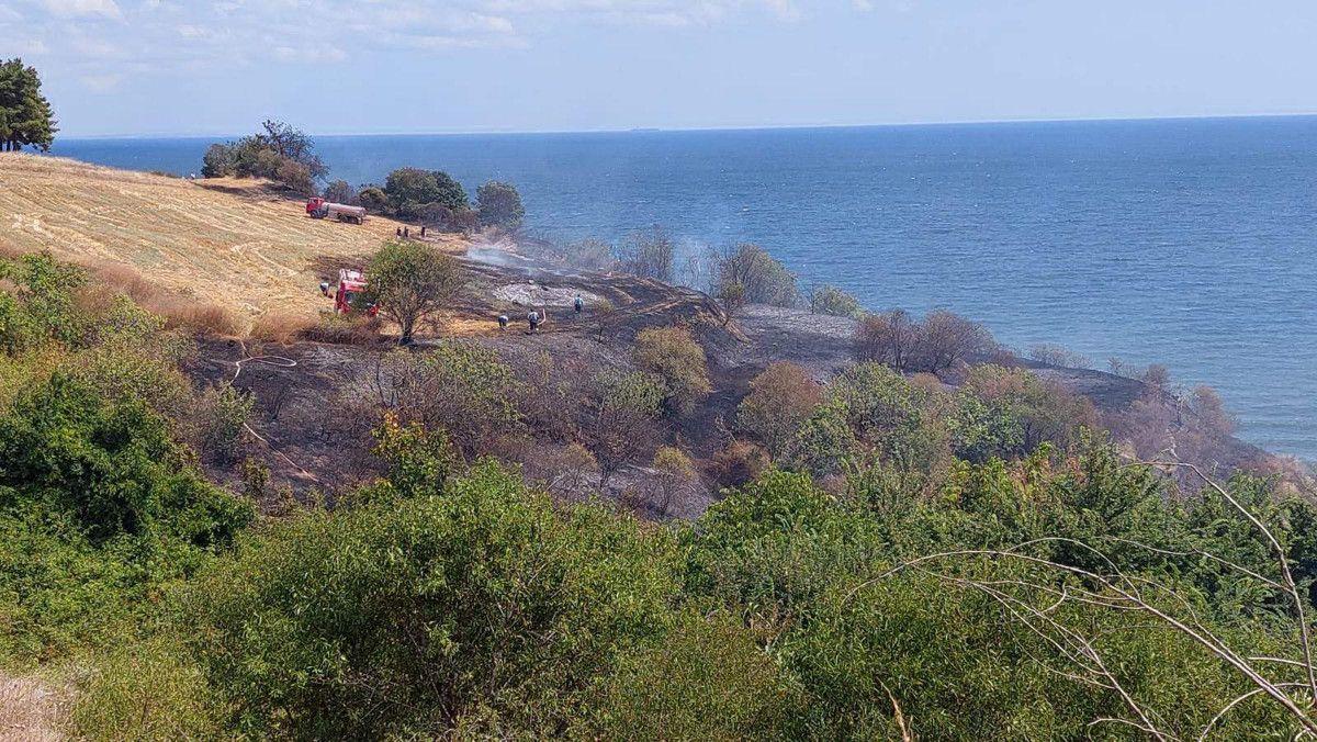 Tekirdağ da makilik alanda yangın çıktı #2