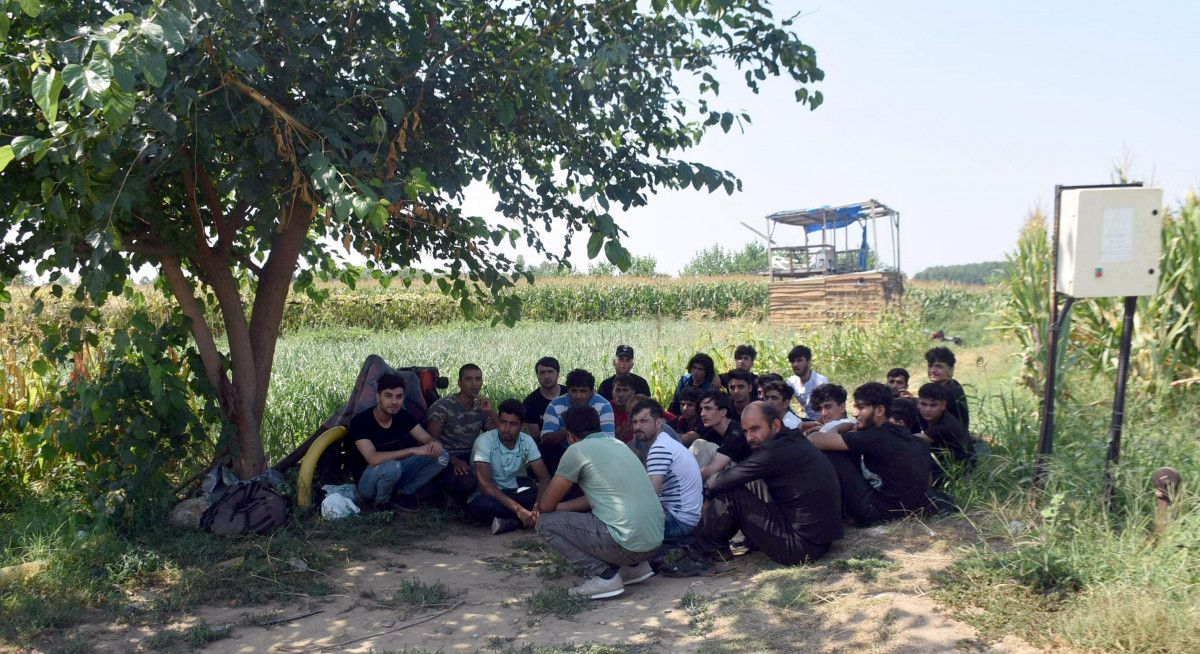 Edirne, Yunan sınırının açıldığı iddiasına inanan Afgan göçmen akınına uğradı #9