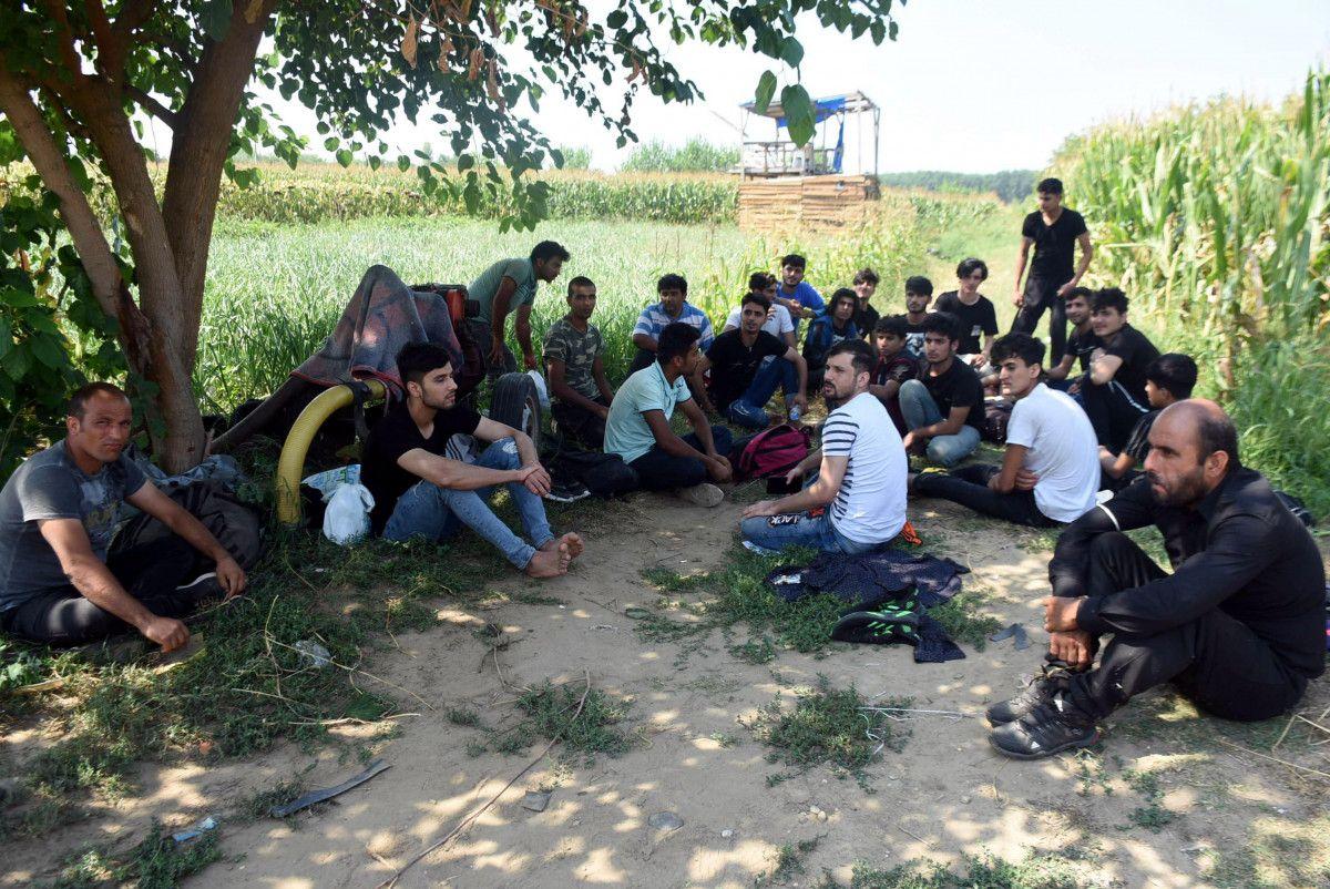 Edirne, Yunan sınırının açıldığı iddiasına inanan Afgan göçmen akınına uğradı #1