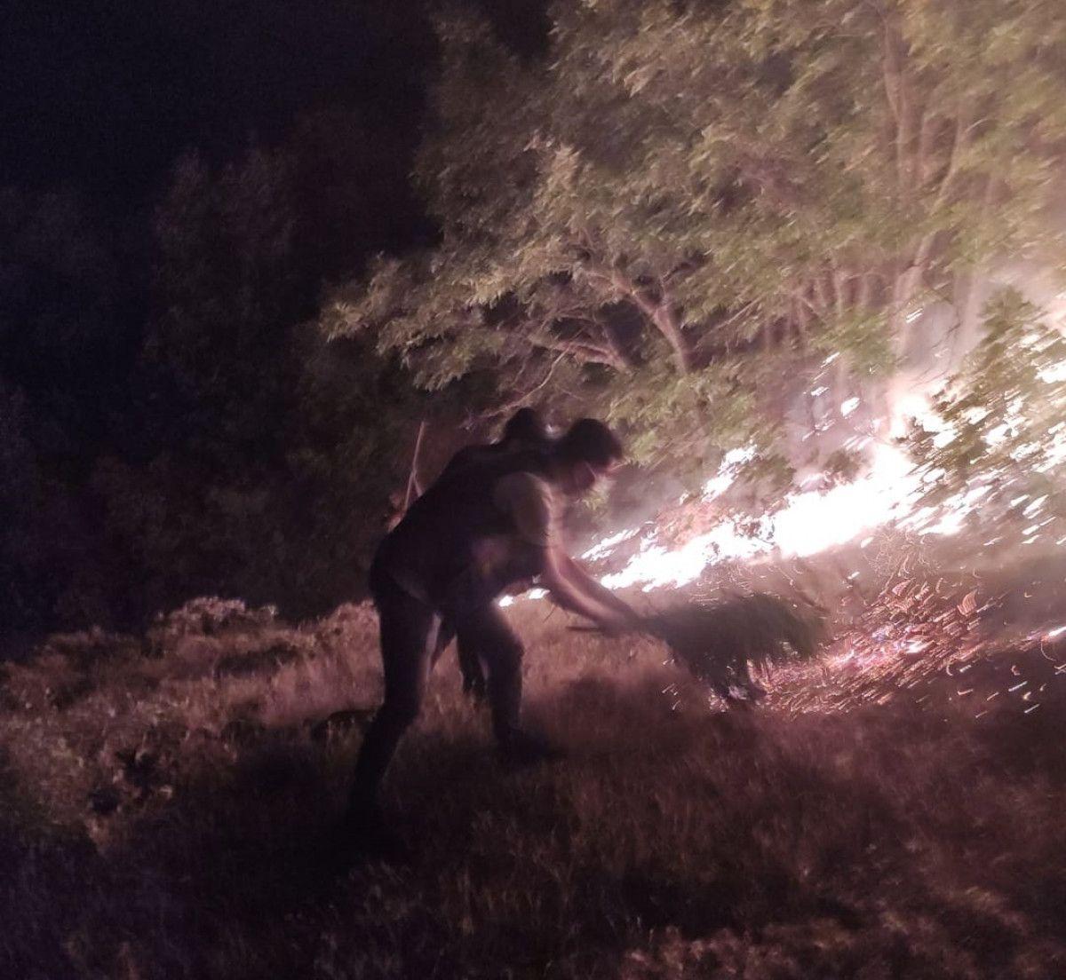 Bingöl de çıkan orman yangını, kontrol altına alındı #4