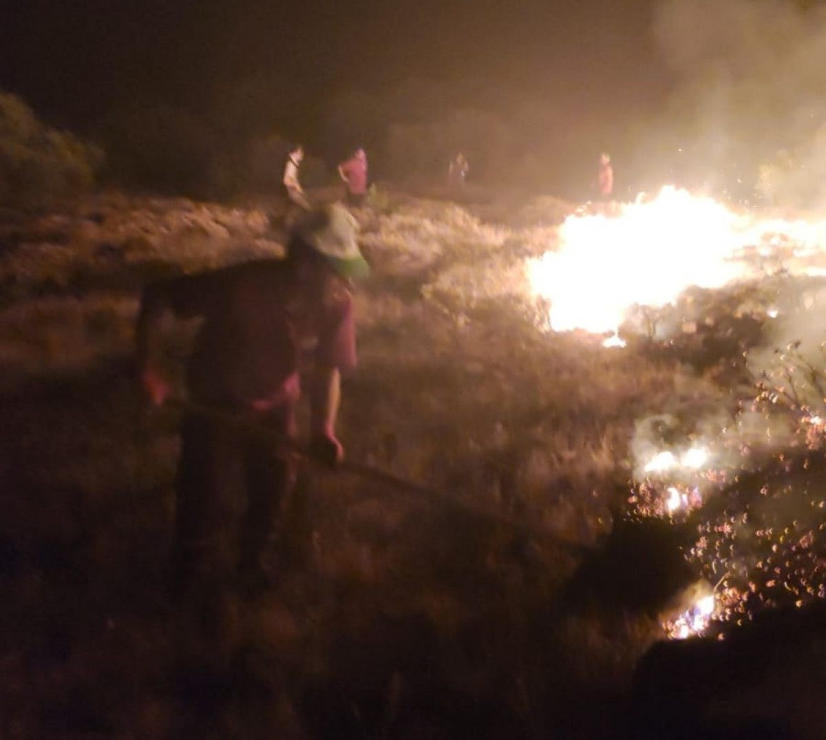 Bingöl de çıkan orman yangını, kontrol altına alındı #1