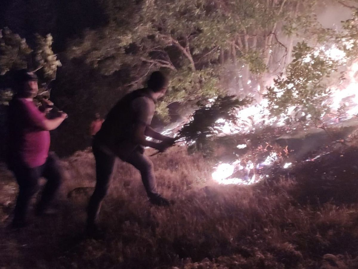 Bingöl de çıkan orman yangını, kontrol altına alındı #3