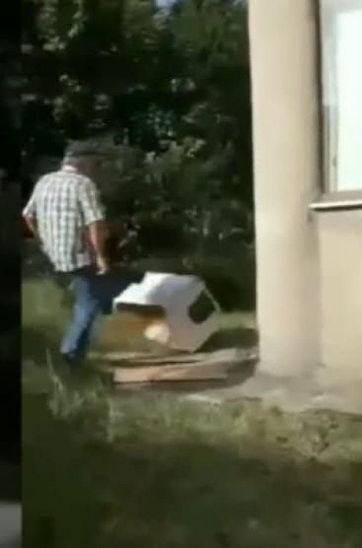 Bolu da kediyi tekmeleyen kişi, ardından kulübesini parçaladı #3
