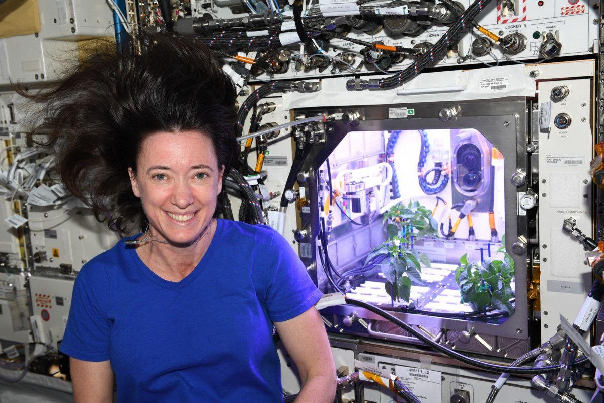 NASA astronotu: Uzayda biber fideleri çiçek açtı #2