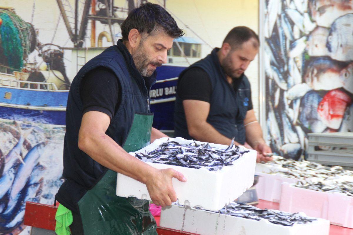 Rize'de kilosu 5 TL ye düşen istavrit, kasalarla satılıyor #10