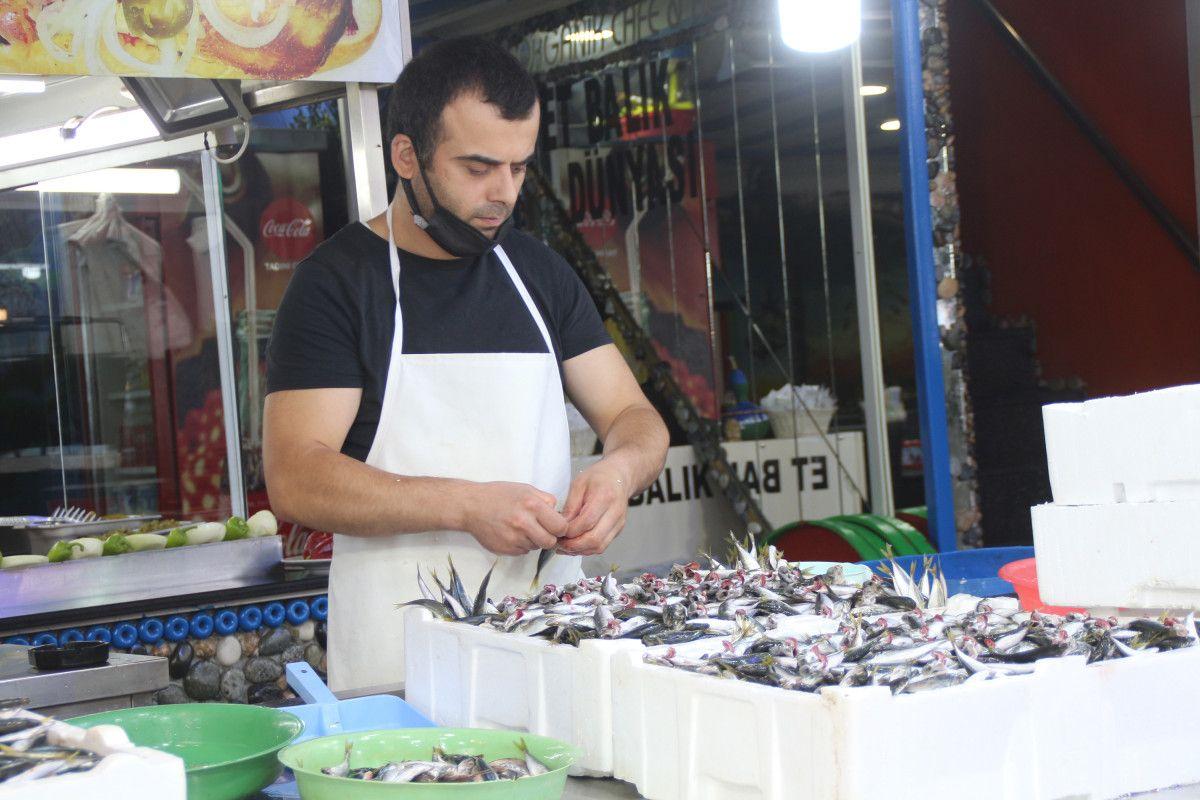 Rize'de kilosu 5 TL ye düşen istavrit, kasalarla satılıyor #4