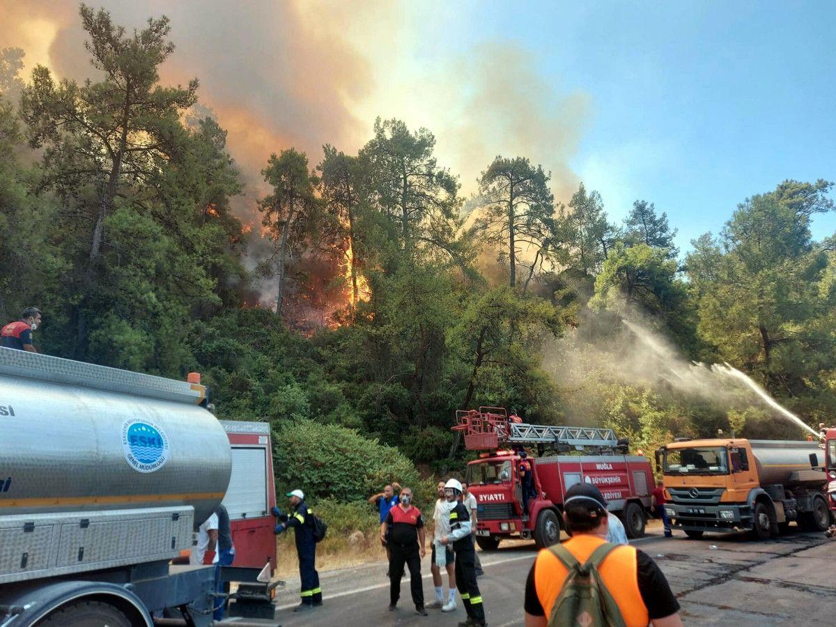 Muğla yangınlarında 52 bin hektar alan zarar gördü #5