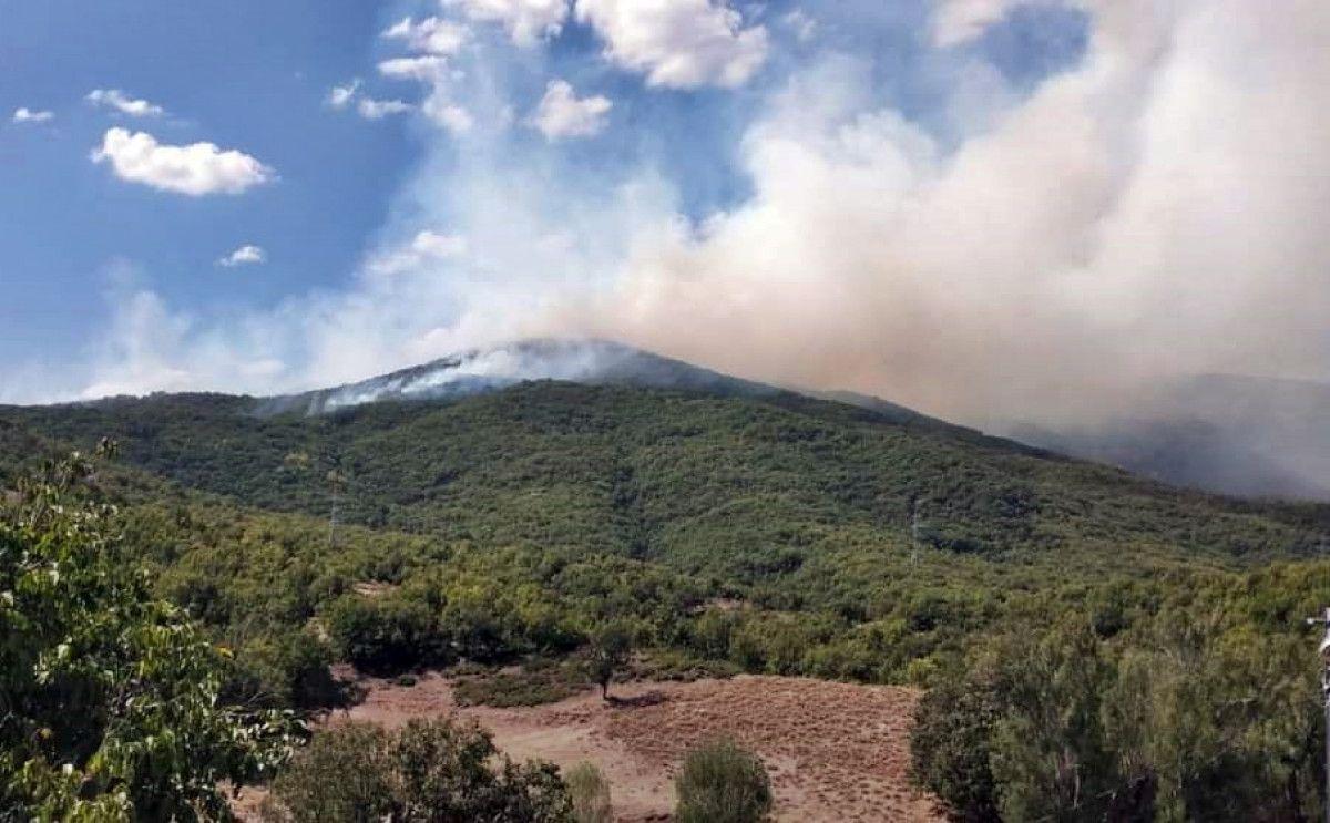 Tunceli de çıkan yangına havadan müdahale ediliyor #4