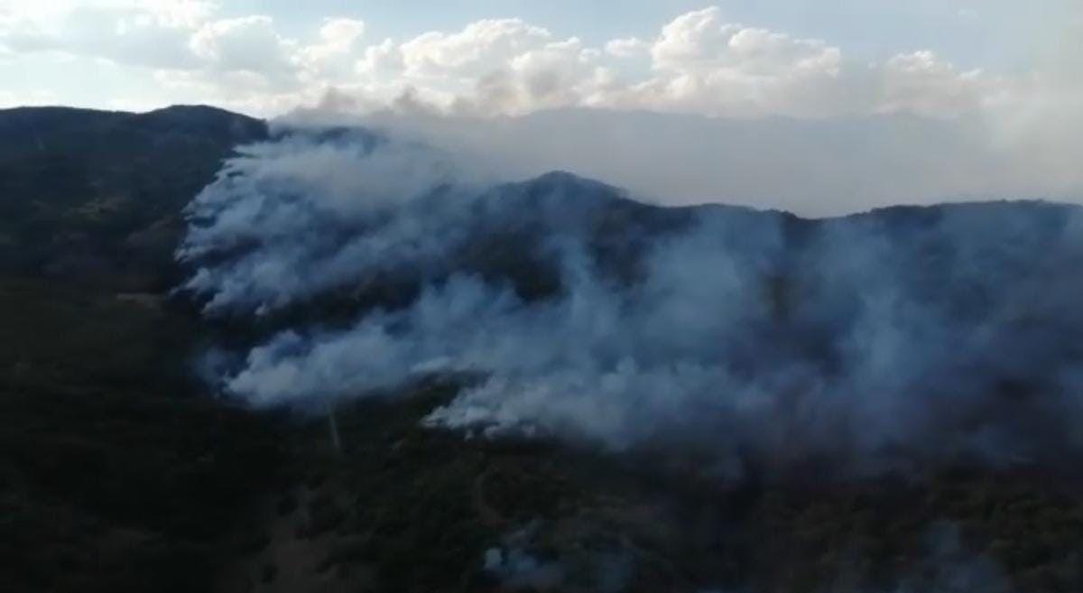 Tunceli de çıkan yangına havadan müdahale ediliyor #2
