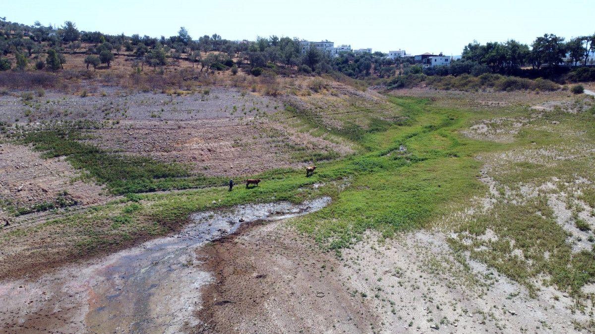 Mumcular Barajı, dolulukta yüzde 10 un altına geriledi #4