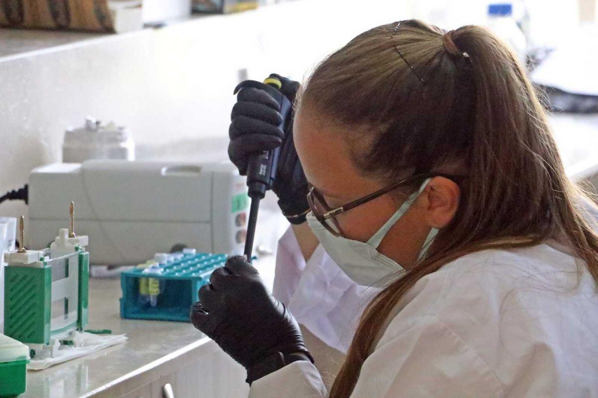 Koronavirüse karşı bitkiden üretilen kokteyl aşı, insan deneyine hazır #3
