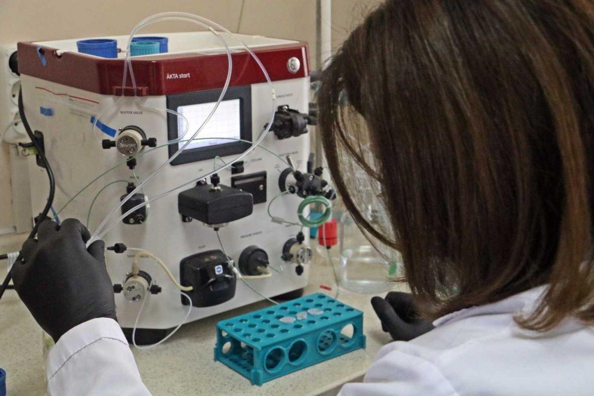 Koronavirüse karşı bitkiden üretilen kokteyl aşı, insan deneyine hazır #5