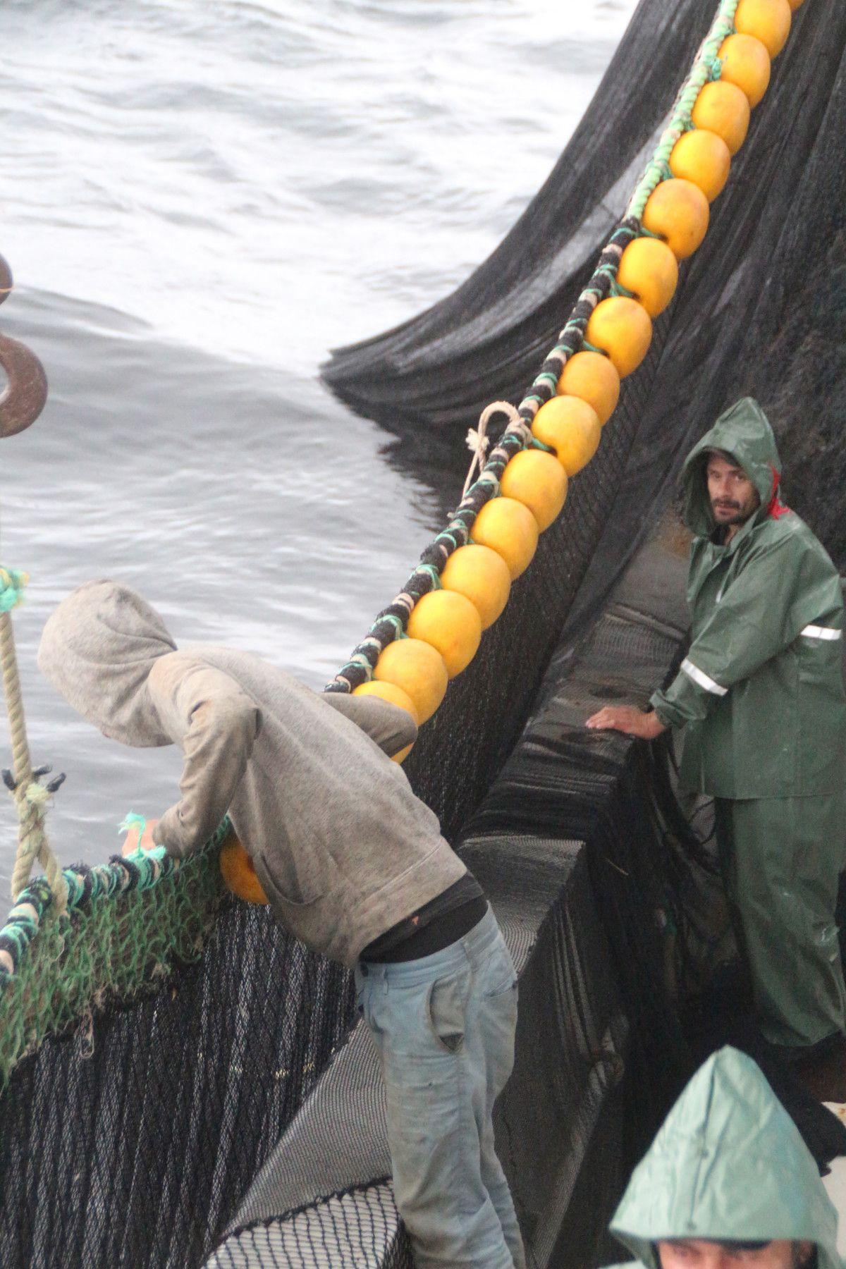 Artvin de balıkçılar için palamut heyecanı başladı #9