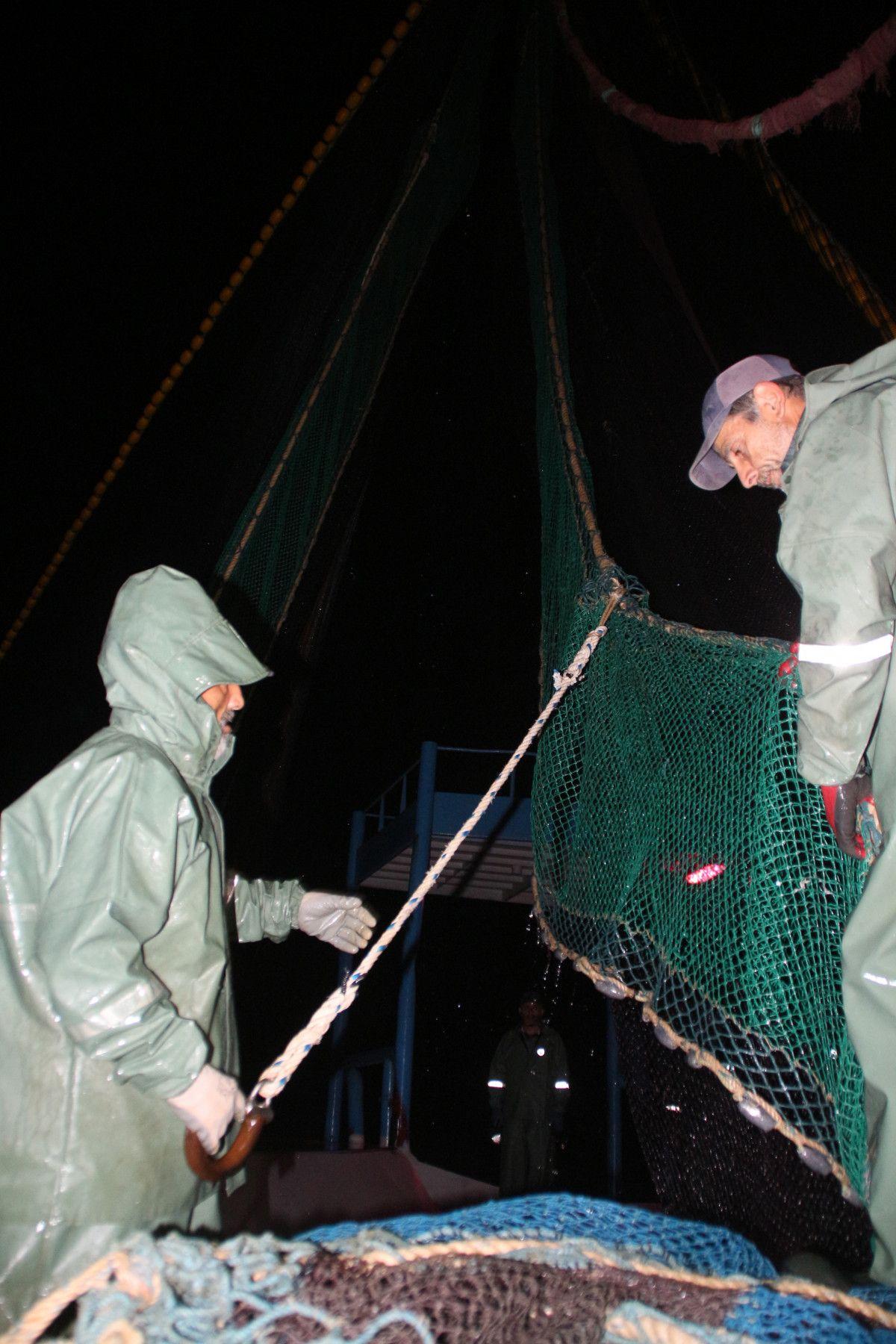Artvin de balıkçılar için palamut heyecanı başladı #5