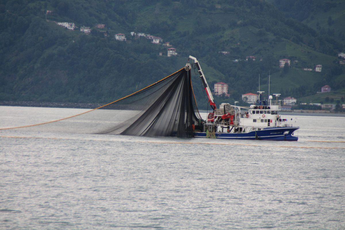 Artvin de balıkçılar için palamut heyecanı başladı #2