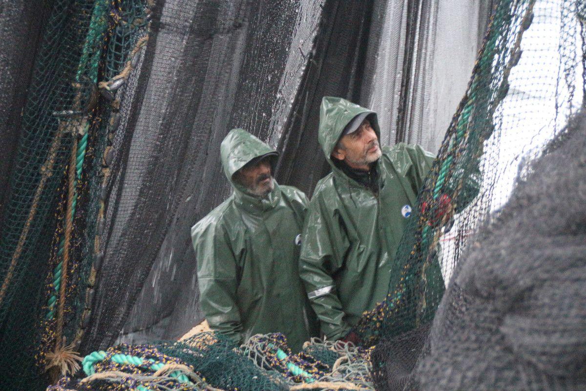 Artvin de balıkçılar için palamut heyecanı başladı #8
