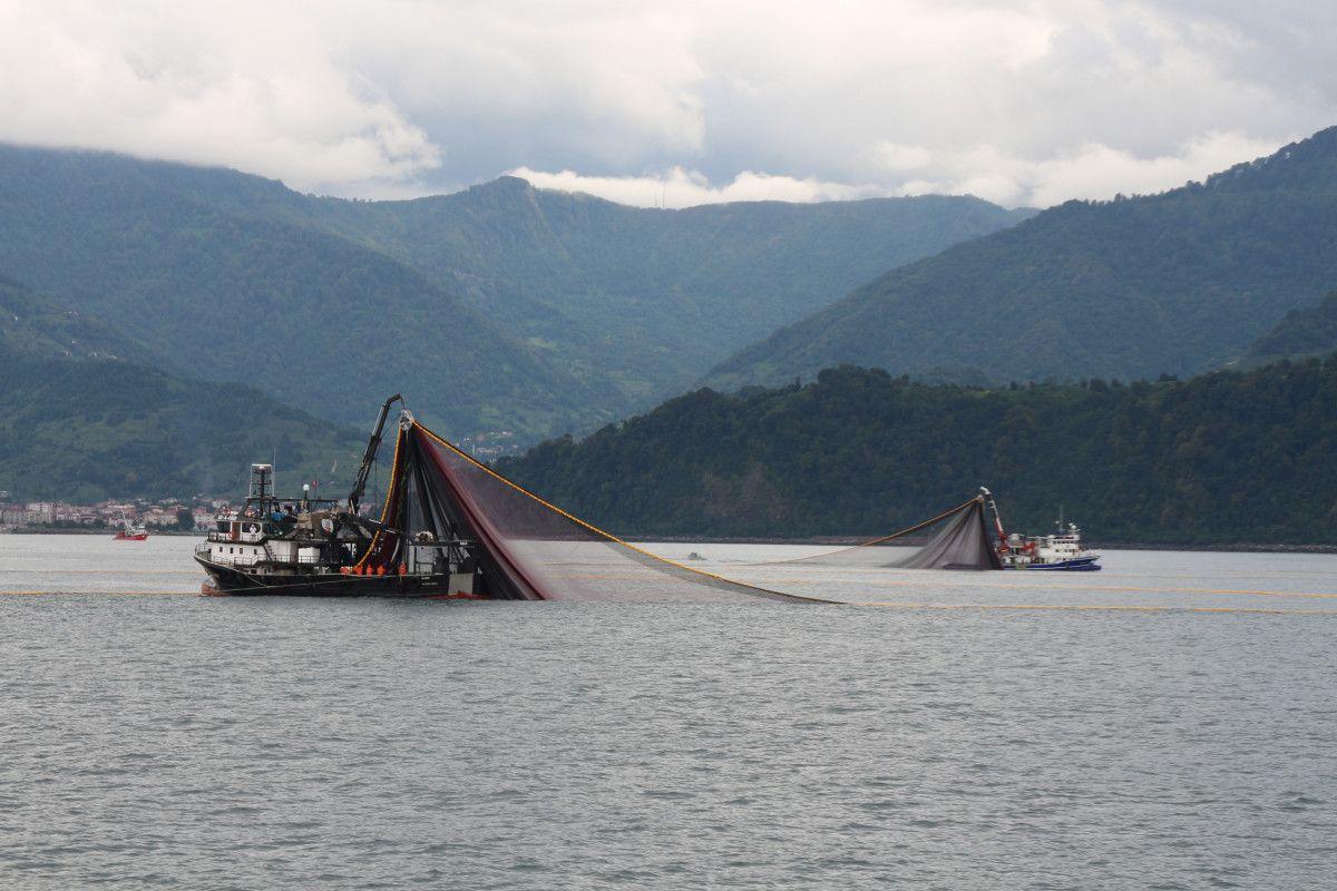 Artvin de balıkçılar için palamut heyecanı başladı #4