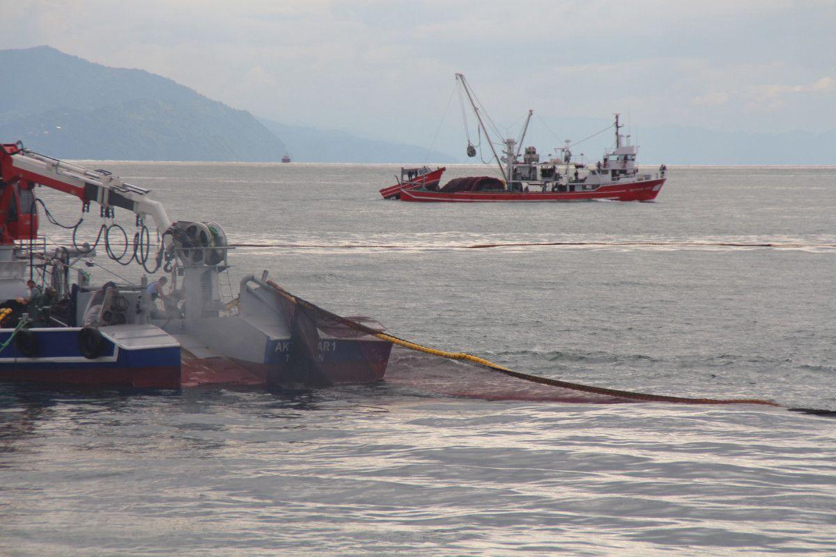 Artvin de balıkçılar için palamut heyecanı başladı #3