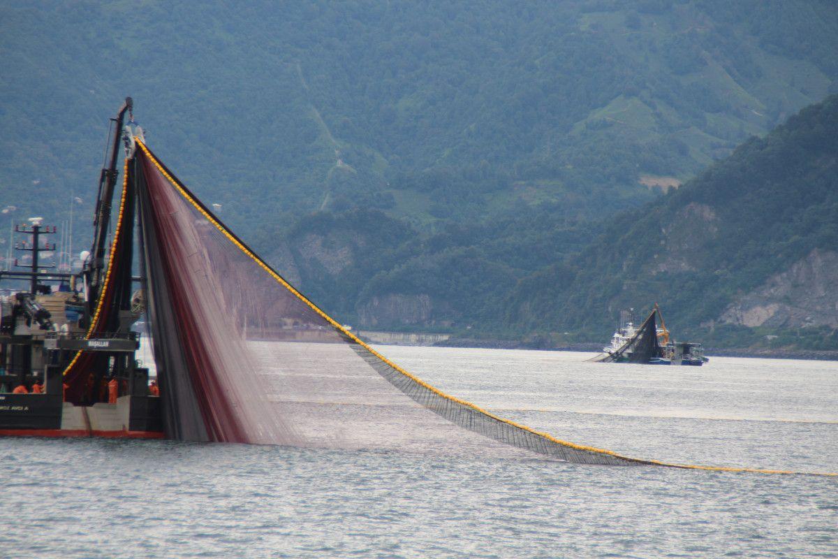 Artvin de balıkçılar için palamut heyecanı başladı #1
