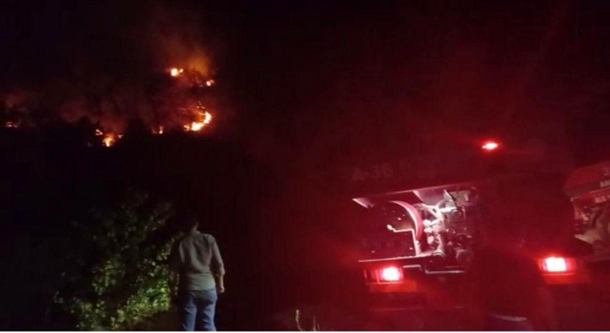 Hatay'da orman yangını #3