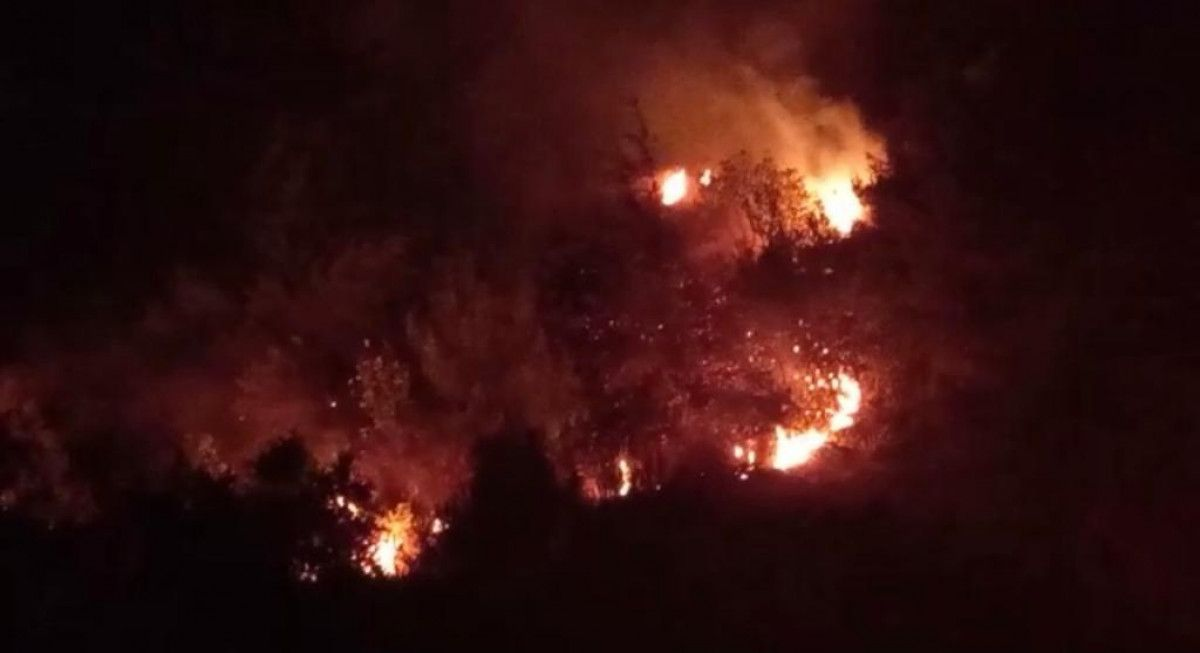 Hatay'da orman yangını #2