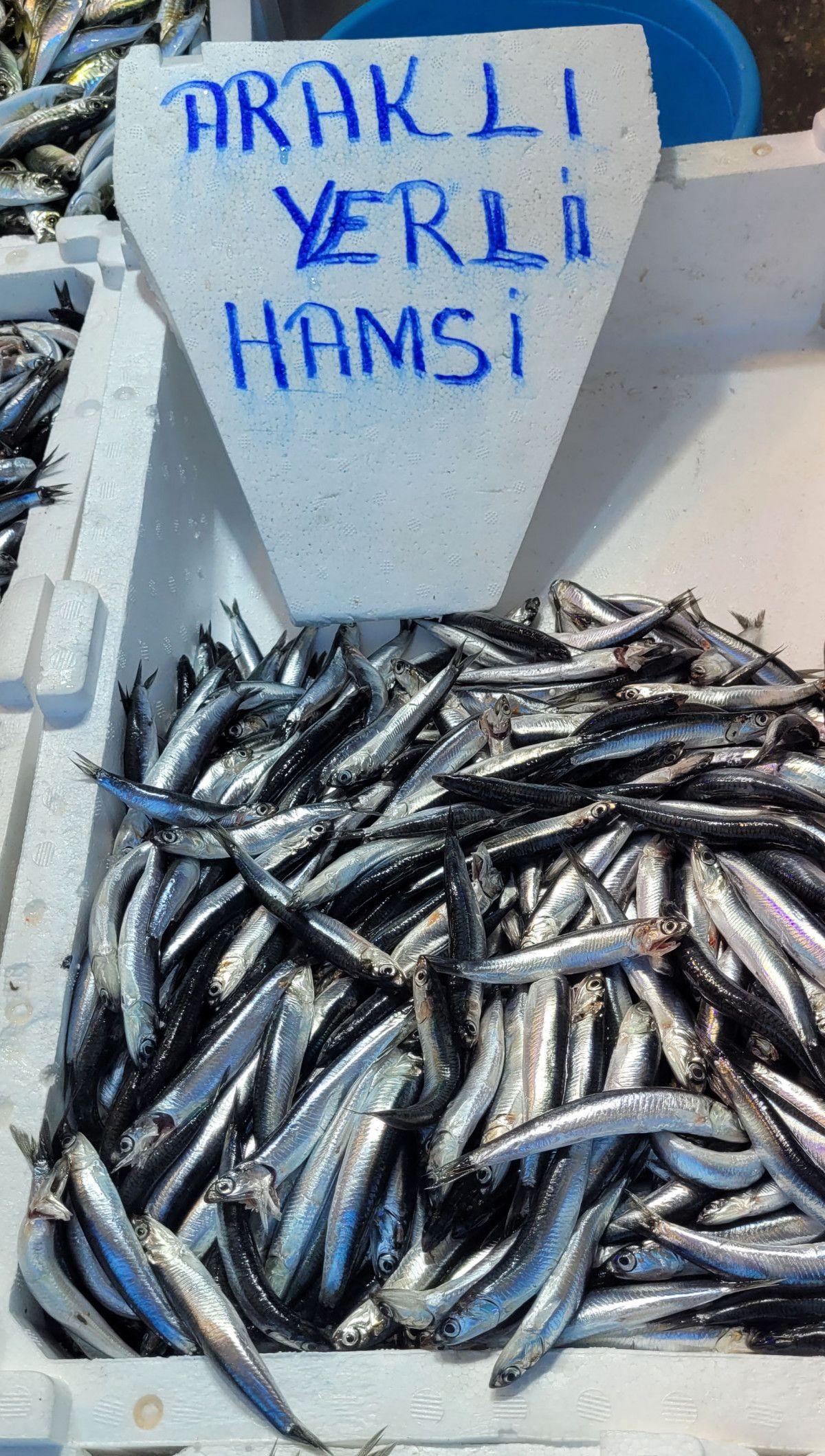 Trabzon da denizlerde ağlara hamsi takılmayınca fiyatlar yükseldi #9