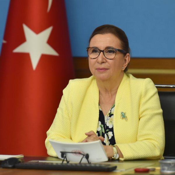 Pekcan: Türk Eximbank 380 milyon euro kredi sağladı #1