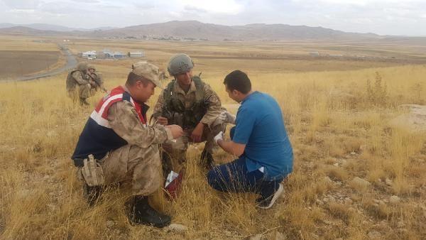 Van'da askerler nesli tükenmekte olan Arap Tavşanı buldu