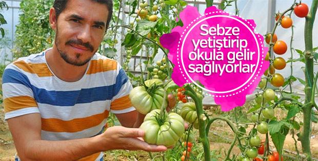 Öğrencilerden sebze üretimi