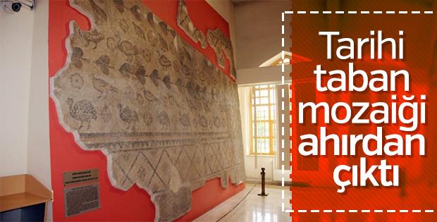 Ahırda tarihi taban mozaiği bulundu
