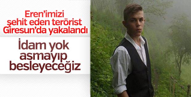 Eren Bülbül'ü şehit eden terörist yakalandı