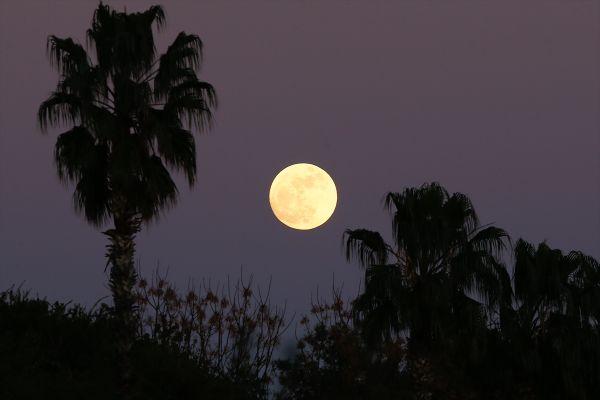 Süper Ay kendini gösterdi