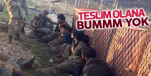Tunceli'de 4 PKK'lı teslim oldu