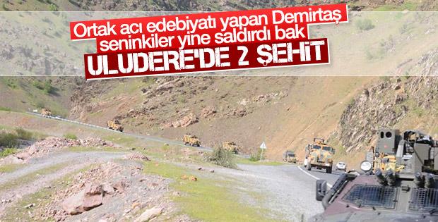 Şırnak Uludere'de hain saldırı: 1'i üsteğmen 2 şehit